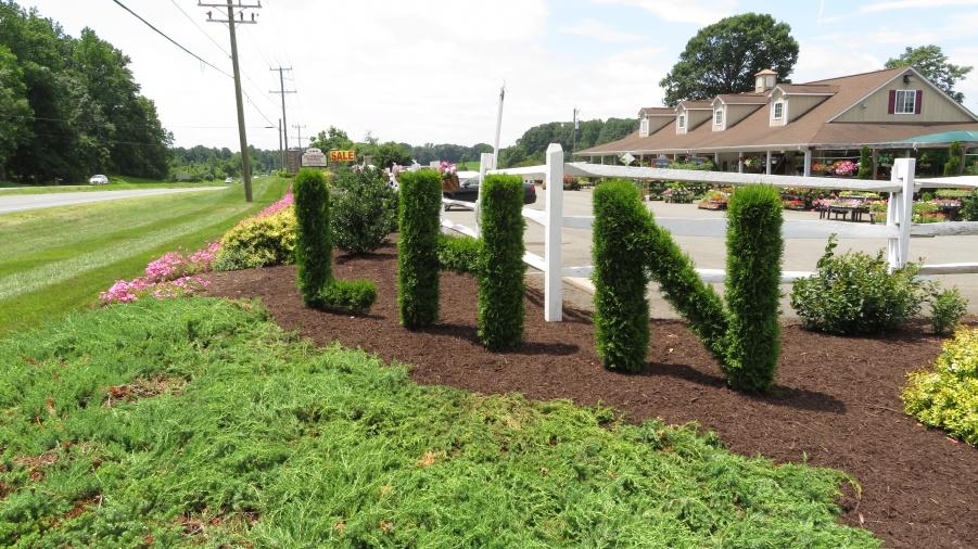 Lee Highway Nursery Nursery Landscaping Maintenance Va